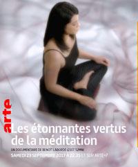 Les étonnantes verrues de la méditation
