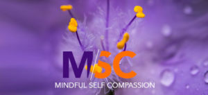 MSC - Mindful Self Compassion
